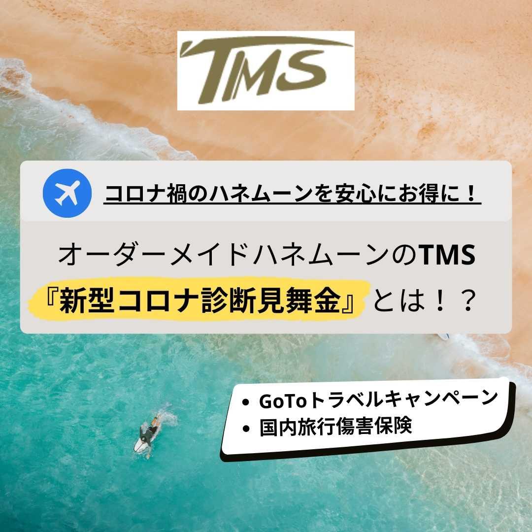 GoToトラベルキャンペーンを利用した国内ハネムーンはTMS
