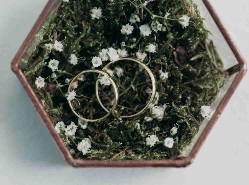 結婚指輪をブライダルジュエリーブランドから選ぶならマイナビウエディング ジュエリー
